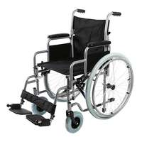 Кресло-коляска Barry R1 (ширина сидения 46 см) с быстросъемными колесами